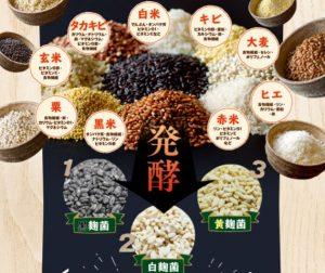 厳選麹の生酵素 菌活ぷらす 自然の酵素力で酵素ダイエット